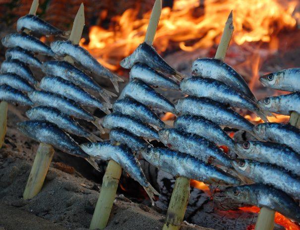 Sardinen Feuer